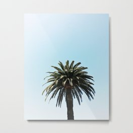 Palm Tree in San Diego, California Metal Print