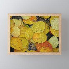 Water droplets on autumn aspen leaves Framed Mini Art Print