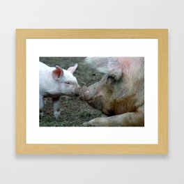Piggy Love Framed Art Print