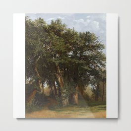 Alexandre Calame 1810 - 1864   GROUP OF OAK TREES Metal Print