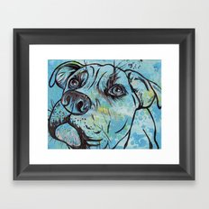 Blue Pit Bull Dog Framed Art Print