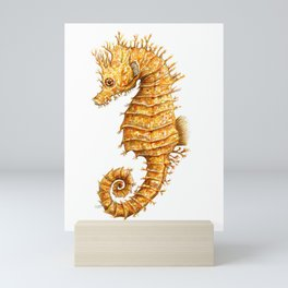 Sea horse, Horse of the seas, Seahorse beauty Mini Art Print