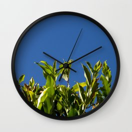 Blue over Green Wall Clock