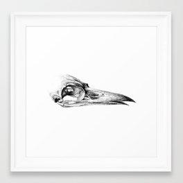 Crow Skull Framed Art Print