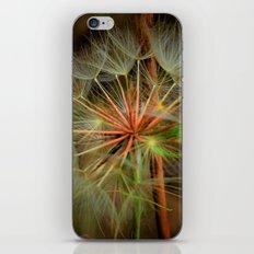 Blowing Away iPhone & iPod Skin