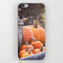 pumpkins + milk cans iPhone Skin