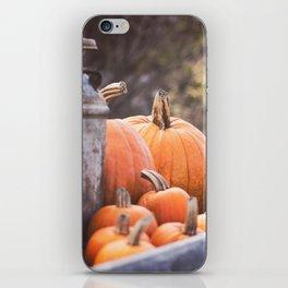 pumpkins + milk cans iPhone Skin