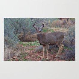 Zion Deer Rug