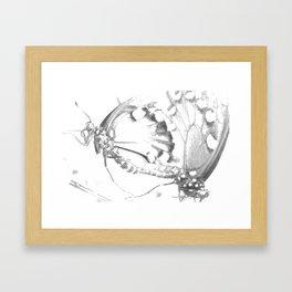 Dragonfly Mating Framed Art Print