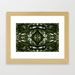Tillandsia in the Sky with Diamond Framed Art Print
