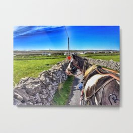 Carriage with a Tinker Pony Metal Print