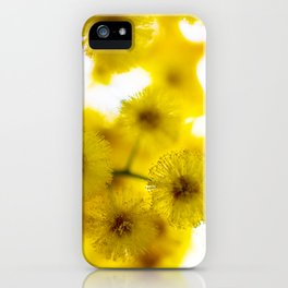 Acacia Flower III iPhone Case