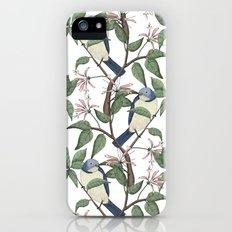 Bird Spotting iPhone (5, 5s) Slim Case