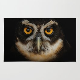 Trading Glances with a Spectacled Owl Rug