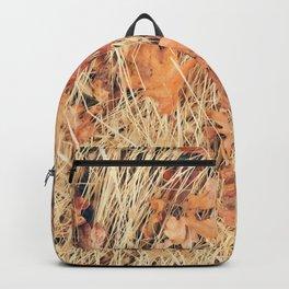 California Hills Backpack