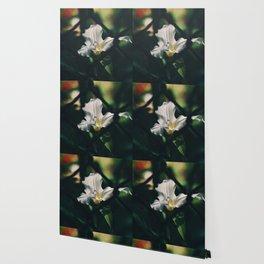 Trillium Gardens Wallpaper