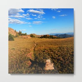 Watercolor Landscape, Lost Creek Wilderness 22, Colorado Metal Print