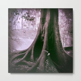 Temporary shelter from the storm  Metal Print