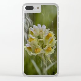 Yellow common Toadflax flower Clear iPhone Case