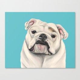 Sweet Little English Bulldog Canvas Print
