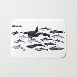 Delphinidae: Dolphin family Bath Mat