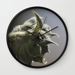Vanguard Wall Clock