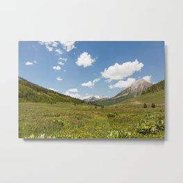 Crested Butte, Colorado Metal Print