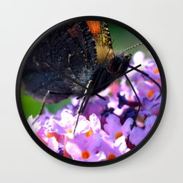 Comma butterfly on Buddleia Wall Clock
