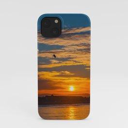 Pelicans at Sunrise iPhone Case