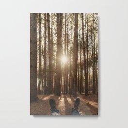 Amongst the Pines Metal Print