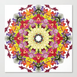 Abundantly colorful orchid mandala 1 Canvas Print