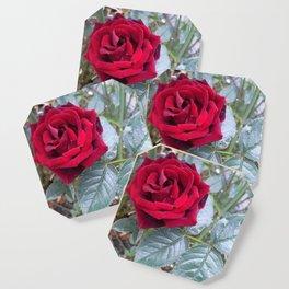 Red Rose Coaster