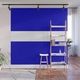 EMS: The Thin White Line Wall Mural