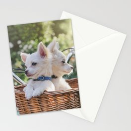 manny + chico Stationery Cards