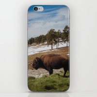 bison iPhone & iPod Skins featuring Bison by Mikey Price