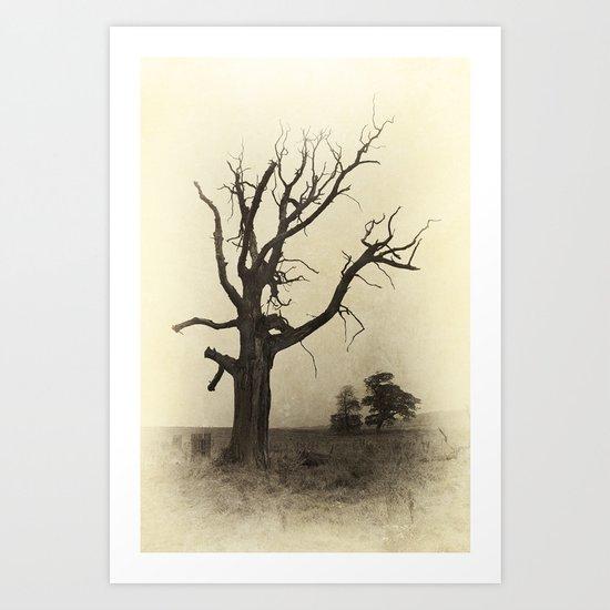 Ye Olde Tree Art Print
