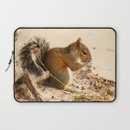 Squirrels Meal Laptop Sleeve