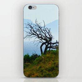 Bay Tree iPhone Skin