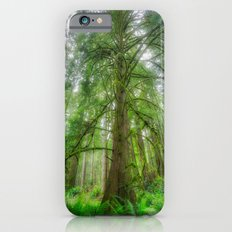 Ethereal Tree Slim Case iPhone 6s