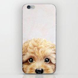 Toy poodle Dog illustration original painting print iPhone Skin