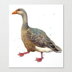 Goose Art Print, Mother Goose, Grey Goose,  Canvas Print