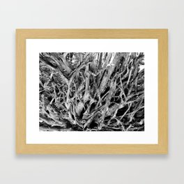 Brachial Framed Art Print