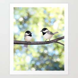 2 black-capped chickadees - bokeh Art Print