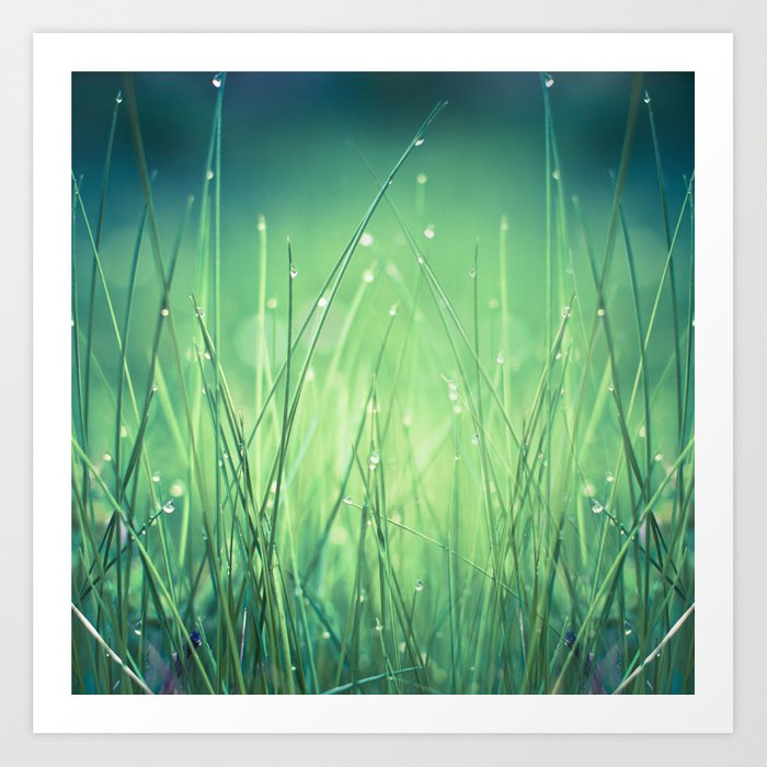 light-water and grass Art Print