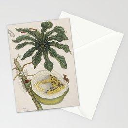 Papaya - Maria Sibylla Merian Stationery Cards