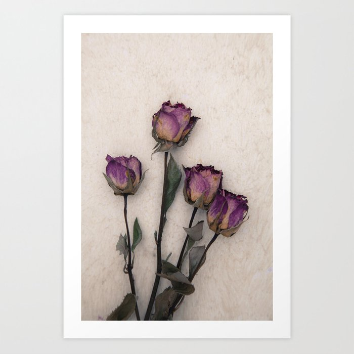 four dried roses Art Print
