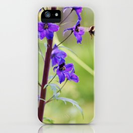 Flying bumble-bee in meadow iPhone Case