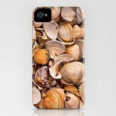 Sea Shells iPhone (4, 4s) Slim Case