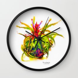 Tillandsia Streptophylla Air Plant Wall Clock