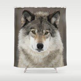 Winter Wolf Shower Curtain